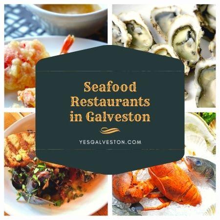Seafood Restaurants in Galveston
